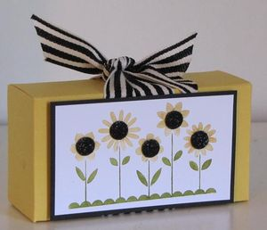 Shelli Box